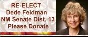 Re-Elect Dede Feldman